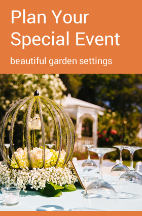 Plan Your Special Event