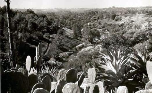 Garden Creek, circa 1976