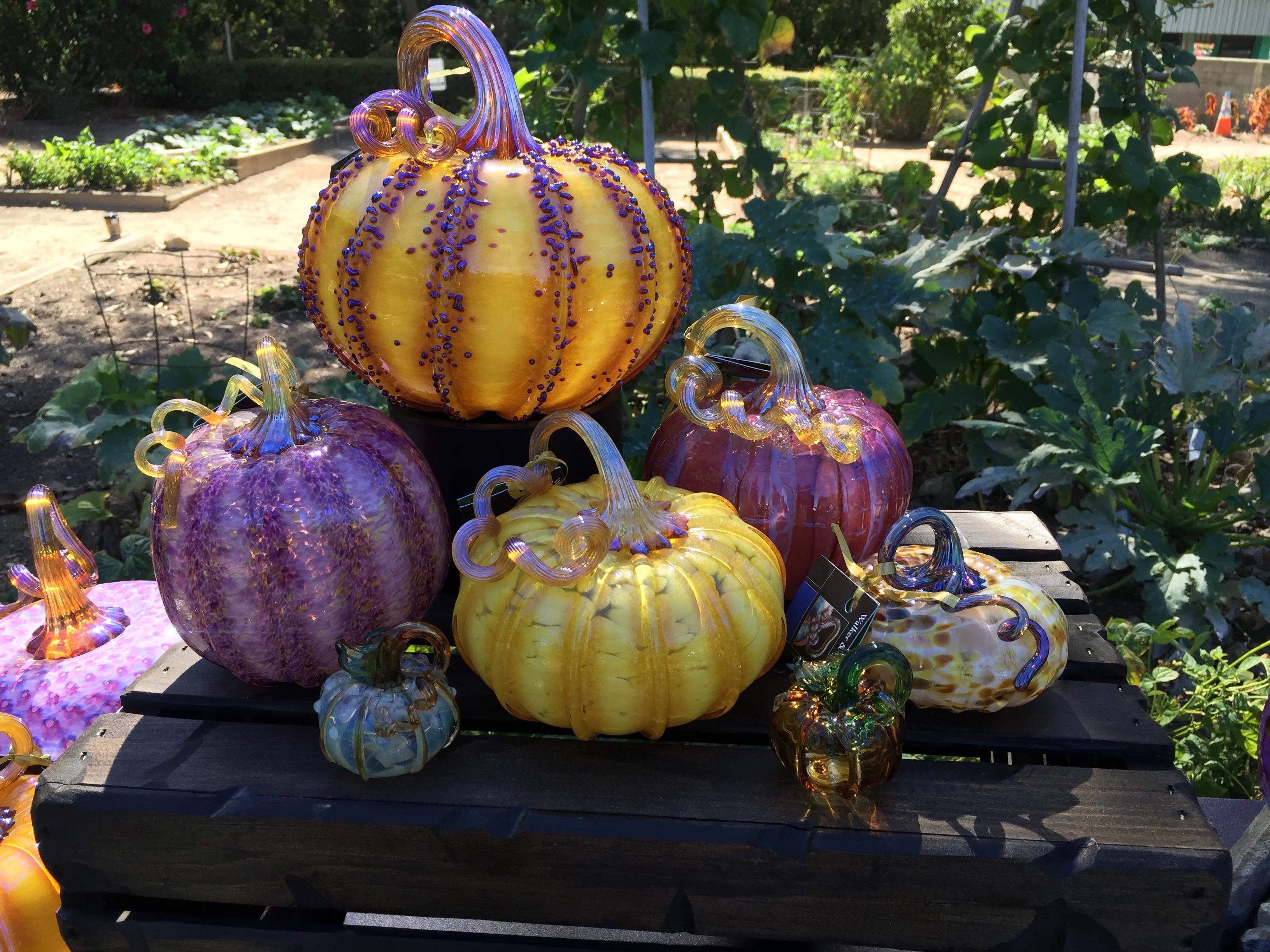 pumpkin patch louisville ky