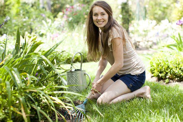 Prace w ogrodzie na pierwsze kilka miesięcy
