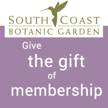 SCBGF Gift Memberships