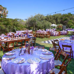 The Meadow Is Perfect For Farm To Table Dinners, Company Picnics, Wedding  Ceremonies And Celebration Of Life Events. This Half Acre Space Can Serve  Up To ...