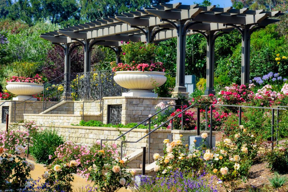 Event Venue The Rose Garden South Coast Botanic Garden Foundation