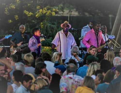 The Blue Breeze Band Will Get You Moving at Social Irrigation This February!