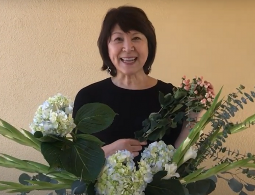 Video Tutorial: A Beautiful Spring Arrangement for Under $25