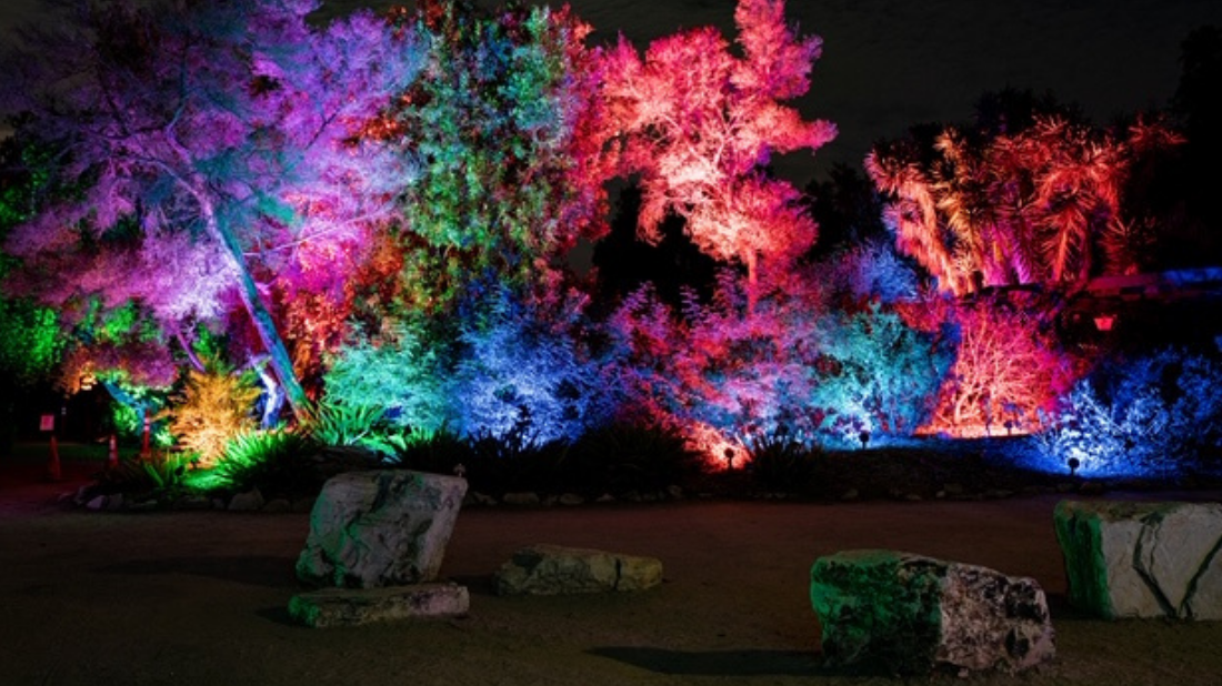 Behind The Scenes Of Glow With California Outdoor Lighting South Coast Botanic Garden Foundation