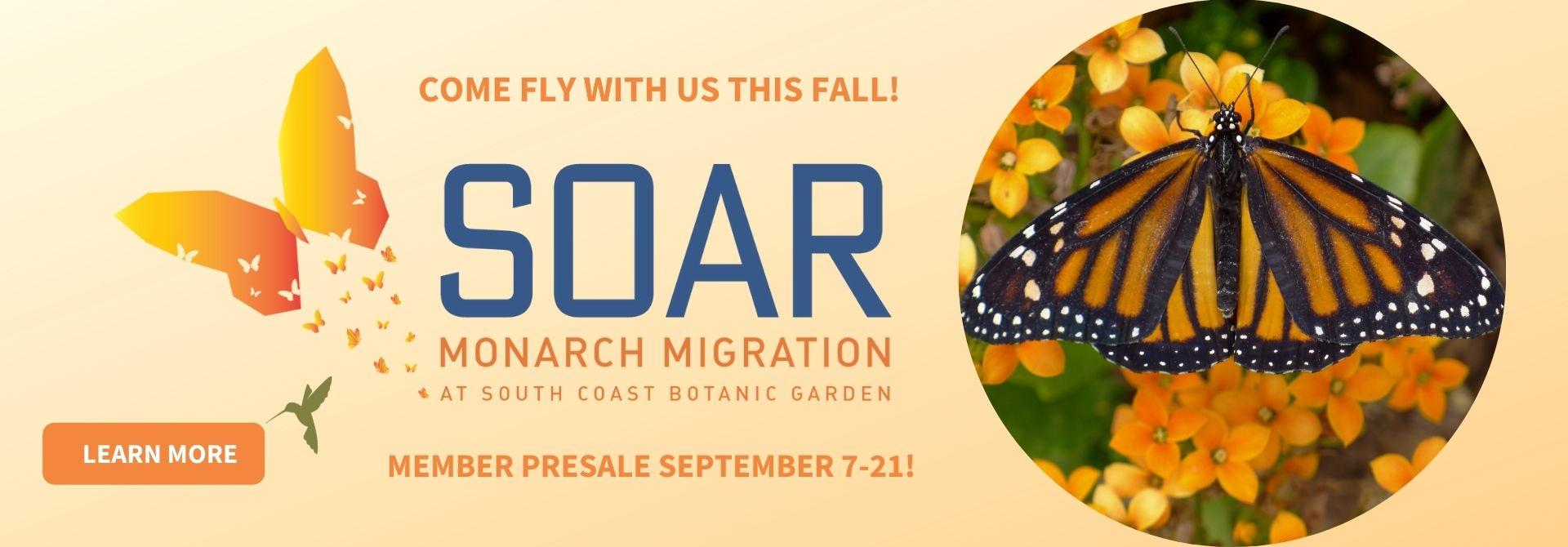 SOAR Monarch Migration